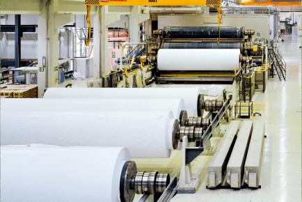 Você está preparado para acompanhar o futuro do mercado de papel e celulose no Brasil?