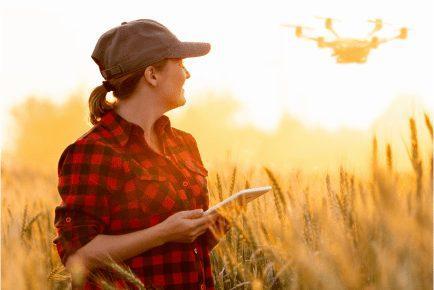 Drones e satélites auxiliam monitoramento de lavouras