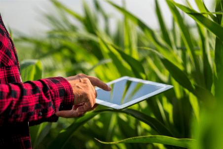 O uso do SIG na elaboração de Zoneamentos Agroecológicos