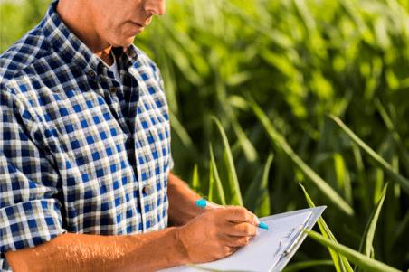 Novo programa apoia a qualificação de estudantes dos cursos de ciências agrárias