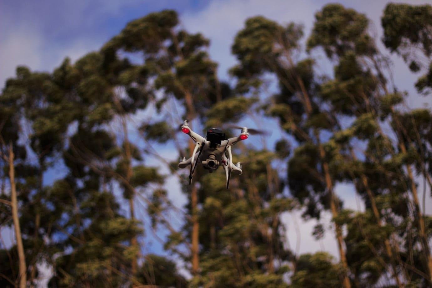 Inovações tecnológicas no Inventário Florestal