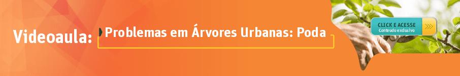 Problemas em Árvores Urbanas: Poda