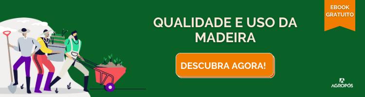 Qualidade e Uso da Madeira