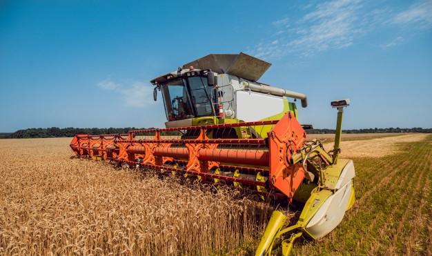 Agronegócio no Brasil: qual a importância para o país?