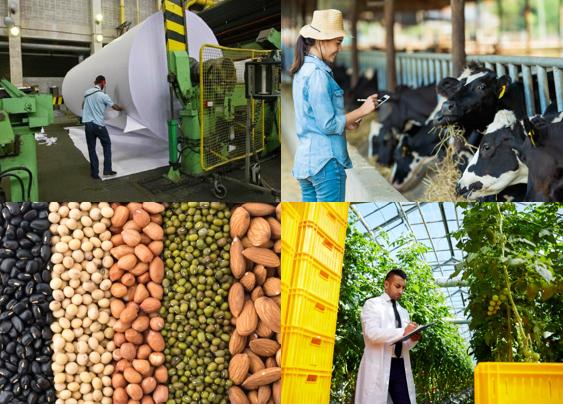 Principais produtos do agronegócio