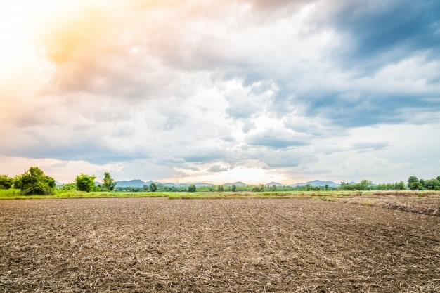 A compactação do solo agrícola: descubra sobre o assunto!