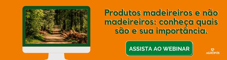 webinar produtos madeireiros e não madeireiros