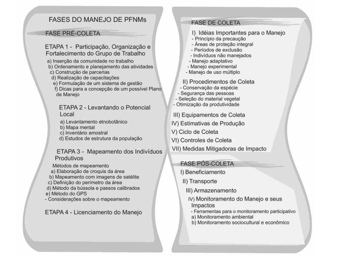 MANEJO PRODUTOS FLORESTAIS NÃO MADEIREIROS