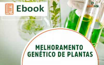 [EBOOK] Melhoramento Genético de Plantas.