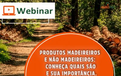 [WEBINAR] Produtos madeireiros e não madeireiros: conheça quais são e sua importância.