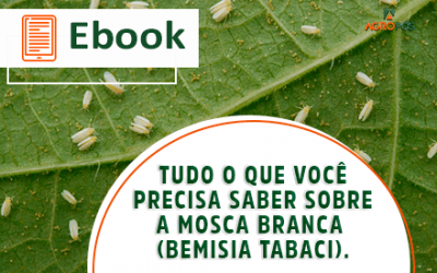 [EBOOK] Tudo o que você precisa saber sobre a mosca branca (Bemisia Tabaci).