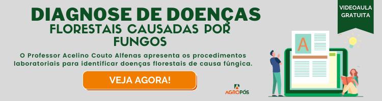 Diagnose de doenças florestais causadas por fungos