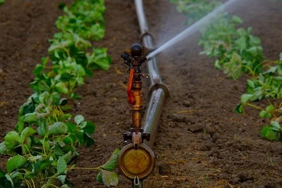 Benefícios da irrigação