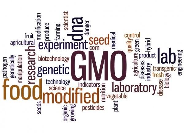 Biotecnologia aplicada à agricultura