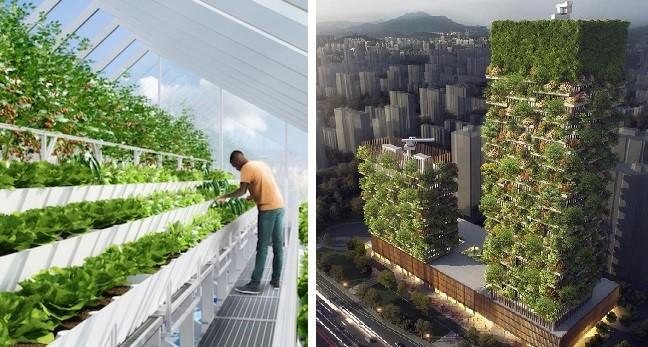 Florestas e fazendas verticais