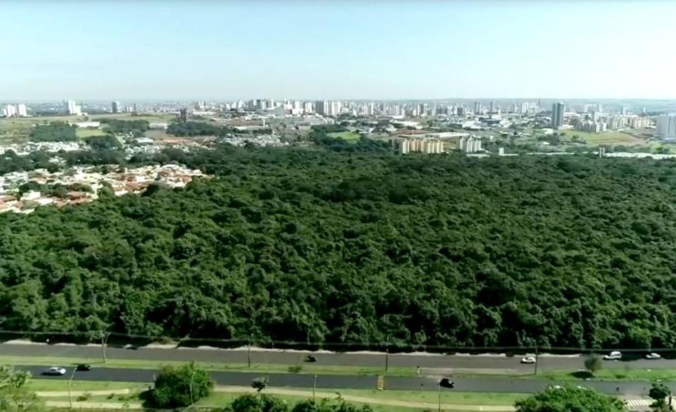 Florestas Urbanas