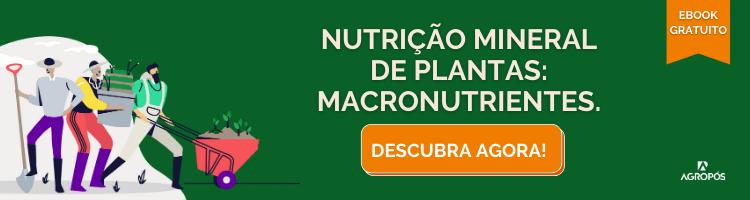 Nutrição Mineral de Plantas: Macronutrientes.