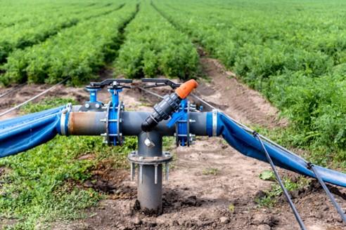Sistema de Irrigação por Gotejamento