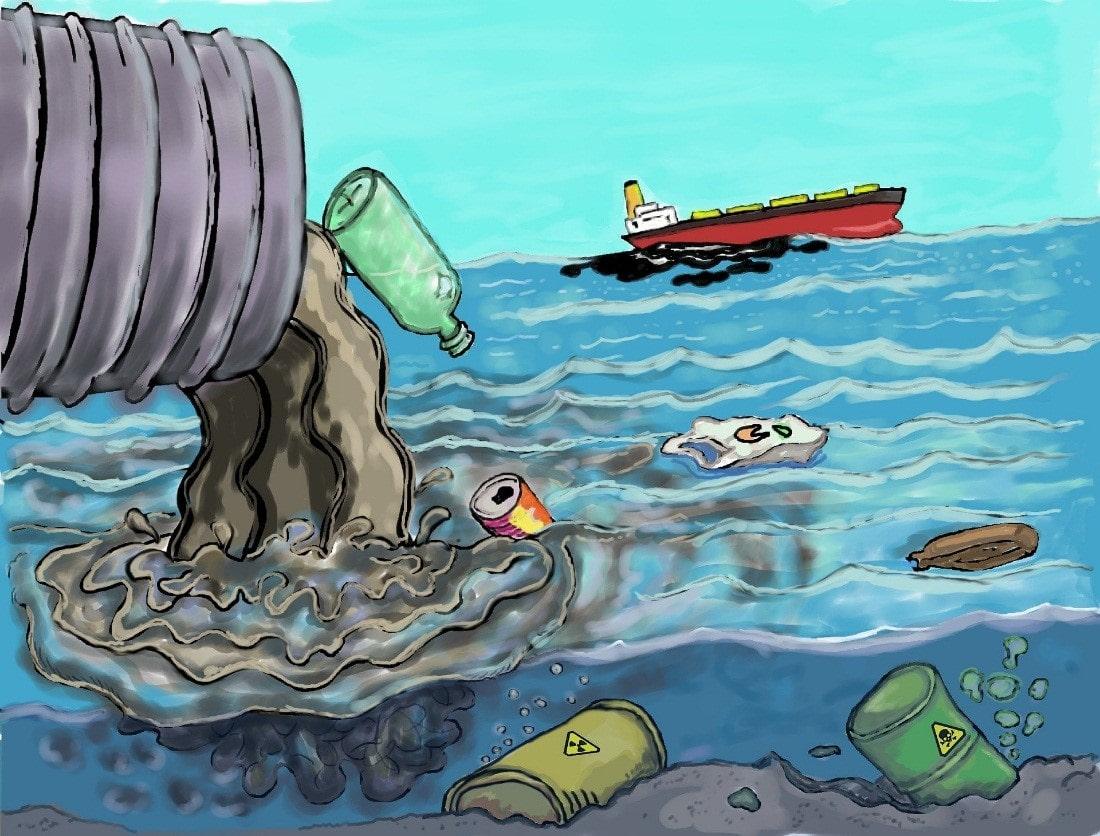 Desafios da valoração ambiental