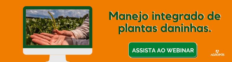 Manejo Integrado de Plantas Daninhas