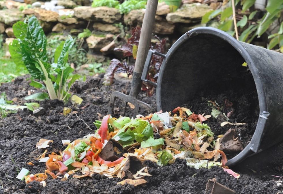 Preservação do Meio Ambiente: Lixo orgânico- compostagem