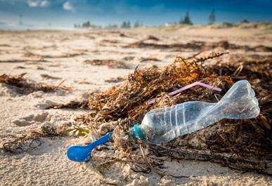 Preservação do Meio Ambiente - Plástico em praias