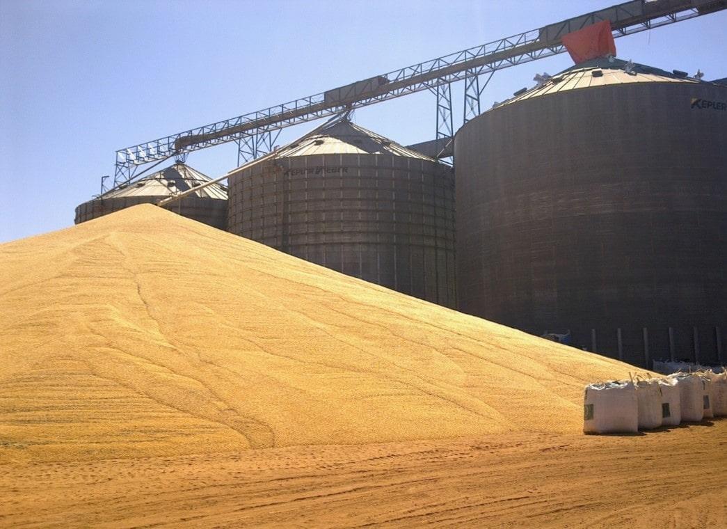 Processo de Secagem do Milho