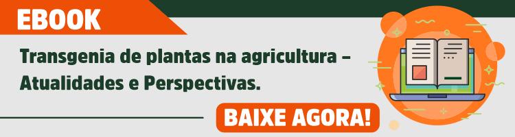 Transgenia de plantas na agricultura
