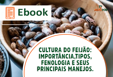 [EBOOK] Cultura do Feijão: importância, tipos, fenologia e seus principais manejos.