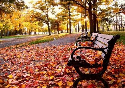 Estação do ano- Outono