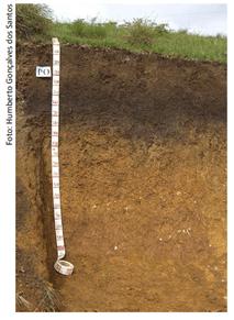 Horizontes principais do solo