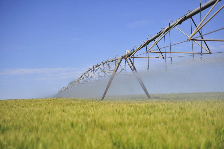 A Importância da Irrigação