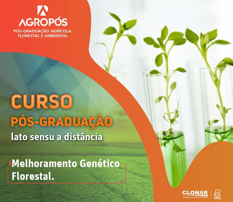 Pós-graduação em melhoramento genético florestal