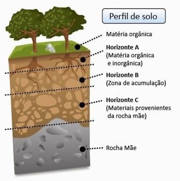 tipos de camadas do solo