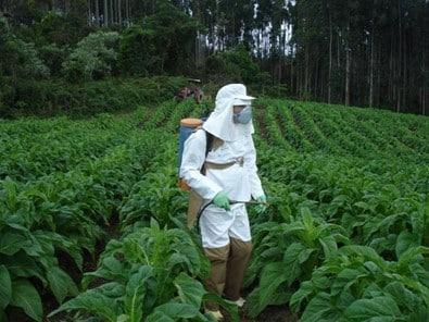 uso de EPI na aplicação de herbicidas