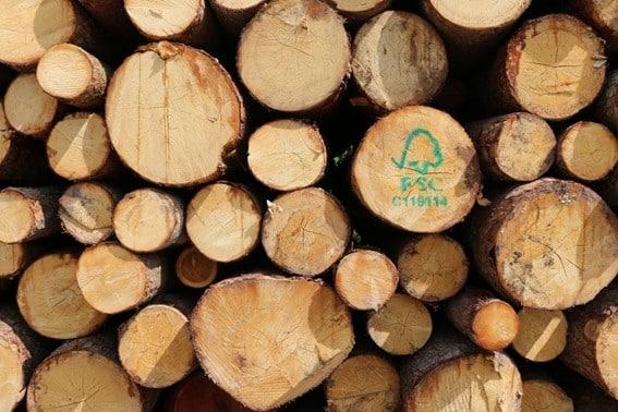 Certificação Florestal