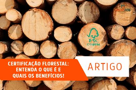 Certificação Florestal: Entenda o que é e quais os Benefícios!
