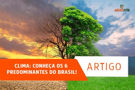 Clima: Conheça os 6 predominantes do Brasil!