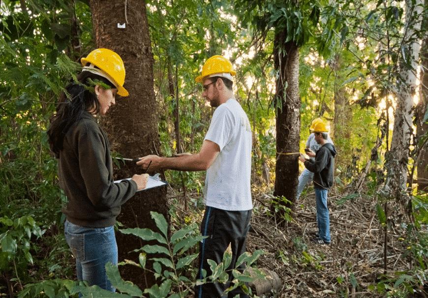 Manejo Florestal Sustentável Comunitário