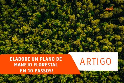 Elabore um Plano de Manejo Florestal em 10 Passos!