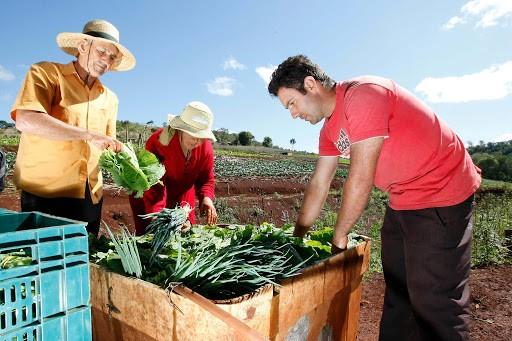 Produção Agrícola - Agricultura Familiar