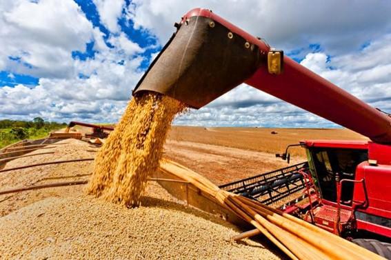 Produção Agrícola - Agricultura Intensiva