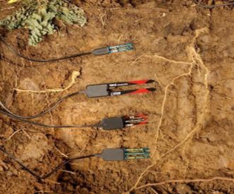 Como funciona os sensores de umidade do solo