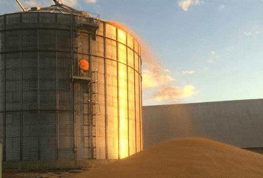 Condições estrutural do silo