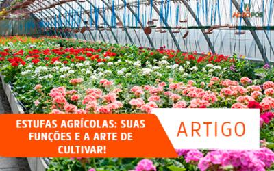 Estufas Agrícolas: suas funções e a Arte de Cultivar!