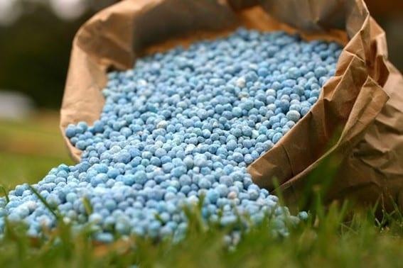 Fertilizantes para plantas