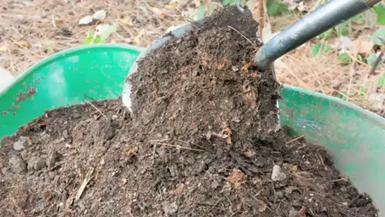 matéria orgânica para as plantas