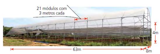 Um exemplo de investimento financeiro para uma estufa de folhosa.