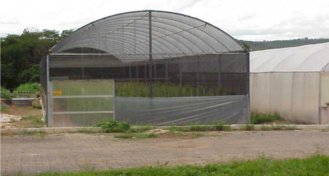 Estufa modelo Arco, não climatizada e de fabricação industrial