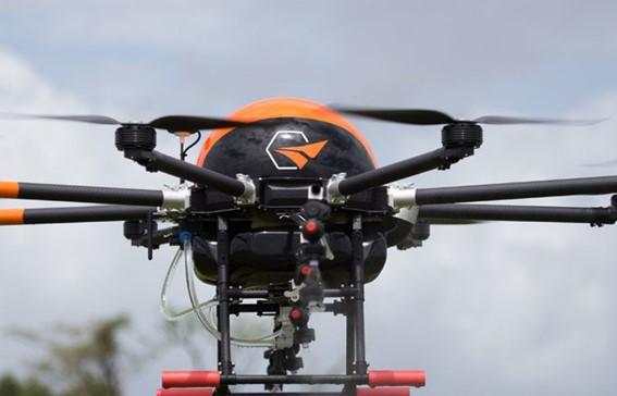 Drone Pelicano